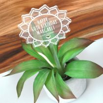 Personalised Engraved Birthday Clear Acrylic Flower Planter Stick