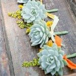 Succulents for the groomsman